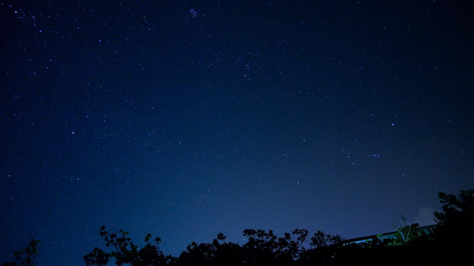 東京で星が綺麗に見える場所。そこは静寂に包まれた森の中、聞こえるのは川のせせらぎだけ。